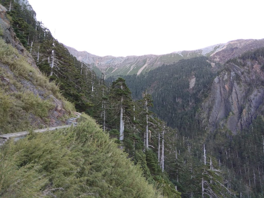 A picture of the Yushan trail