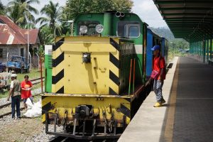 The train in Borneo