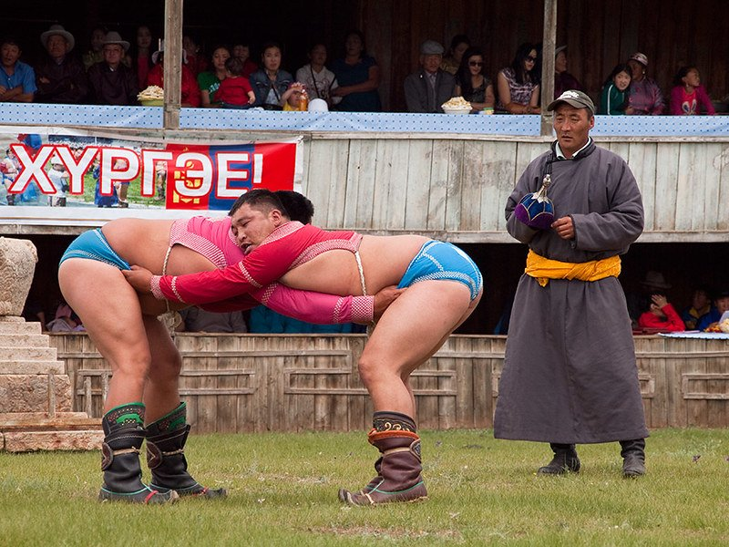 Wrestling competition during Naadam